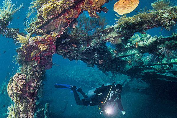 Plongée sous-marine à Tulamben à Bali