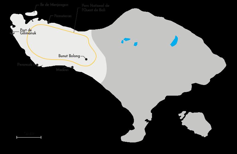 Carte de la région Ouest de Bali
