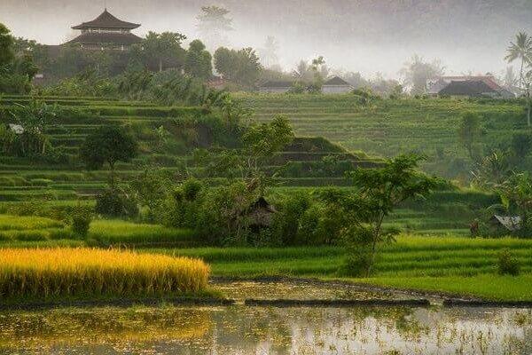 Chasse au trésor à Sidemen, à Bali
