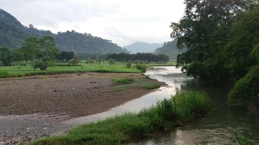 Une rivière dans le Parc Naturel de Meru Betiri