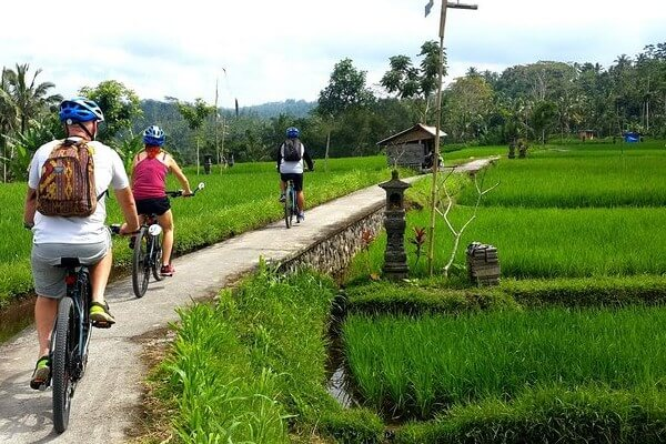 Bali, des activités variées