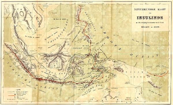Lombok, la ligne Wallace